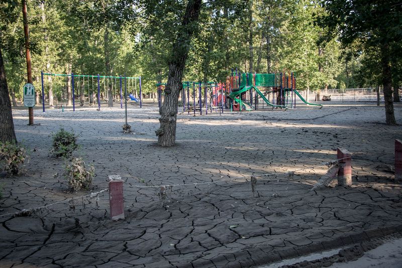 The playground in George Lane Park